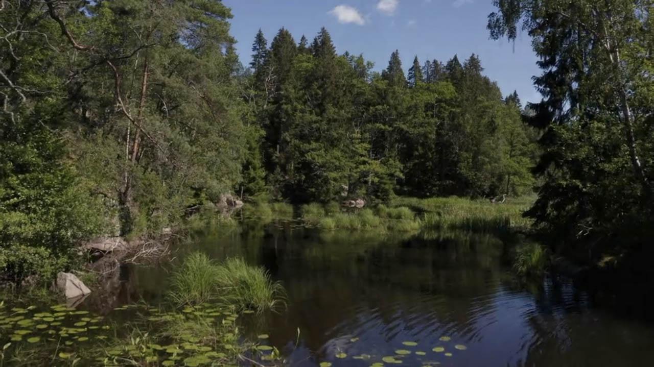 LÖDÖSE – HÅLANDA (MOT SKARA)